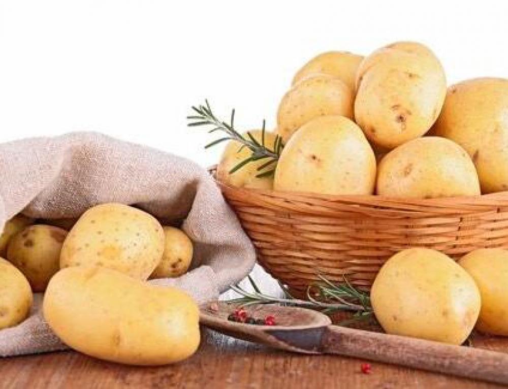 吴江食堂承包推荐:如何挑选土豆